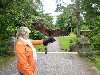 Susan Gormley flying Earrach and Samhradh on her recent Hawk Walk.