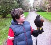Adam Hynes flying Fomhar recently. Adam has taken a Hawk Walk with us many times and is becoming something of a young expert!