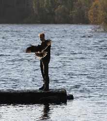 Here is Damian flying one of the babies by the lake at Ashford Castle recently.
