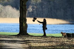 Aurelie flying one of the baby hawks by the lake at Ashford Castle with her dog ( Boo) along for expert advice!