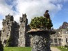 We are so lucky to fly our hawks in such a spectacular and magical place as Ashford Castle. Geoff & Fiona Dolly sent this great photo of beautiful Aztec from their recent Hawk Walk with us where they flew Aztec & Samhradh with us.