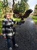 Here is Christina Gamgene flying wonderful Wexford during her recent Hawk Walk with us.