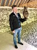 Lauraine & Jeff Hickman had a Hawk Walk with us in 2011 and returned to fly the hawks with us again recently. Here is Jeff getting acquainted with Dingle this time around.