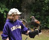 The Schwartzbard girls come face to face with the hawks they are about to fly (Aztec, Chico & Maya)